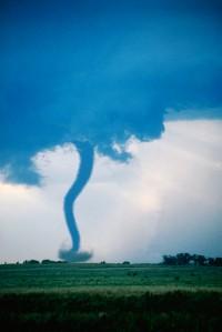 tornado charts