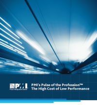 pmi pulse report 2013