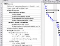 PMI Process