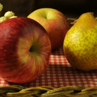 """""""La gestion de projet et la gestion du changement sont comme des pommes et des poires"""" par Jeff Ball"""