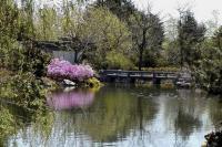 jardin de Chine de Montréal