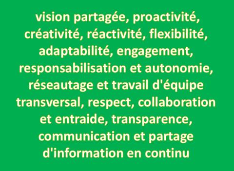 caractéristiques organisation Agile