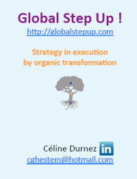 myPgmp Céline Durnez - Global Set Up