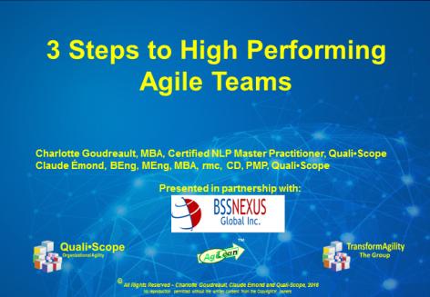 3 Steps to Agile webinar