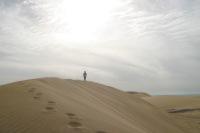 Si vous vous sentez trop souvent seul comme dans un désert, vous apprécierez cet oasis !