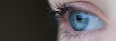 Besoin d'un œil neuf ?