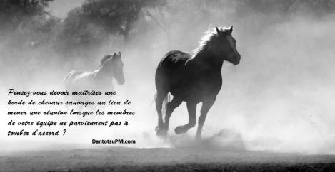 wild-horse-analogy