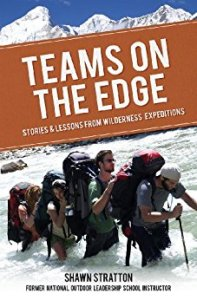 Teams on the edge by Shawn Stratton on Amazon