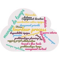 Quelles sont les principales frustrations et difficultés rencontrées dans votre travail de chef de projet ?
